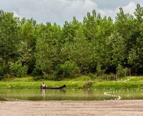 پارک جنگلی کیاشهر