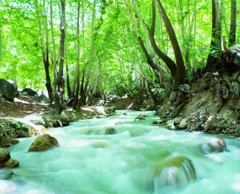 منطقه گردشگری تنگ گنجه ای یاسوج